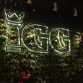 植物とLEDサイン