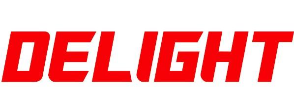 LEDサイン DELIGHT ロゴ